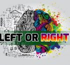 brain_left_right