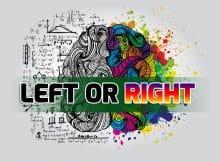 brain_left_right